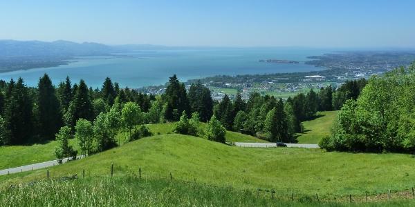 Sommer im Leiblachtal - Blick vom Eichenberg