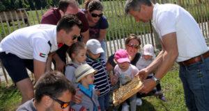 Tag des Bienenstocks 2017