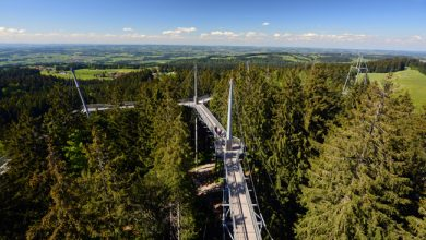 Photo of Skywalk Allgäu Naturerlebnispark