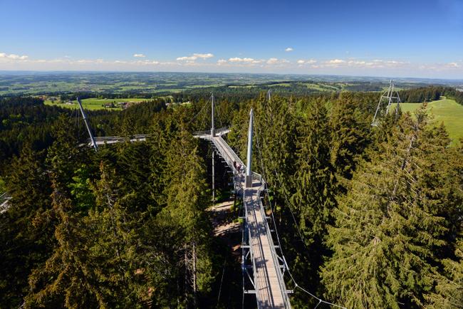 Skywalk Allgäu in Scheidegg-Oberschwenden