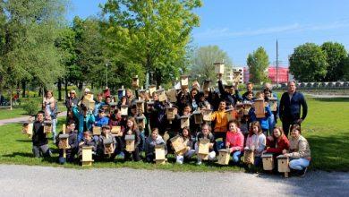 Leiblachtaler Artenvielfalt-Arbeitsgruppe 2019