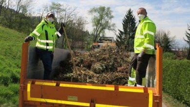 Grünmüllsammlung in der Gemeinde Hörbranz