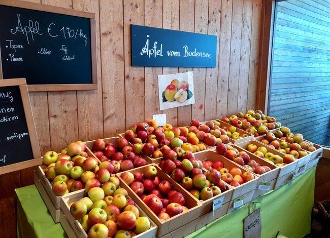 Spargel und Erdbeerzeit in der Genusskiste