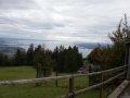 Alpwildpark-am-Pfaender11