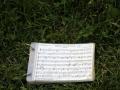 Aussenprobe-Musikverein-Hoerbranz-48