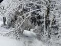 Winterdienst-4