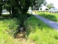 Lochau-B-Oberlochauerbach-ANSICHTEN-VERLAUF-08-06-2020-5