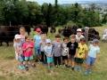 Ferienprogramm Yakhof (1)