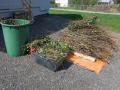 Grünmüllsammlung-in-der-Gemeinde-Hörbranz-10