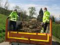 Grünmüllsammlung-in-der-Gemeinde-Hörbranz-6