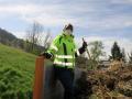 Grünmüllsammlung-in-der-Gemeinde-Hörbranz-7