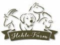 Hehle-Farm-5