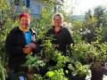 Herbstliche-Pflanzentauschboerse-in-in-Lochau-1