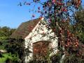 Herbstliche-Pflanzentauschboerse-in-in-Lochau-5