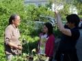 Pflanzentauschbörse-Melittas-Garten-Lochau-2