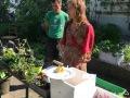 Pflanzentauschbörse-Melittas-Garten-Lochau-6