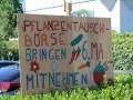 Pflanzentauschbörse-Melittas-Garten-Lochau-7