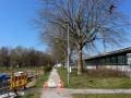 Professionelle-Baumpflege-in-Lochau-1