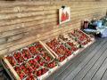Spargel-und-Erdbeerzeit-in-der-Genusskiste-9