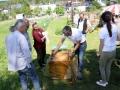Tag des Bienenstocks 2017 (10)