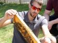 Tag des Bienenstocks 2017 (38)