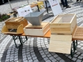 Tag-des-offenen-Bienenstockes-2019-9