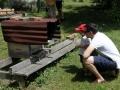 Tag des offenen Bienenstocks 2018 (14)